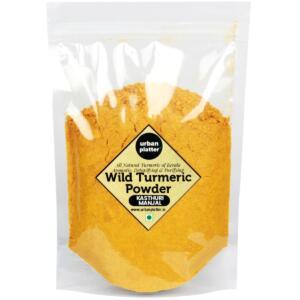 Urban Platter Wild Turmeric Powder, 500g [Curcuma Aromatica / Jangli Haldi / Kasthuri Manjal]