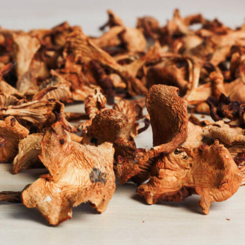 Urban Platter Chanterelles Mushrooms, 40g [All Natural, Dried, Full of Flavour]