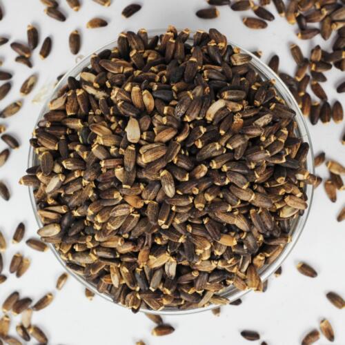 Urban Platter Milk Thistle Seeds Jar, 150g [Rich in Antioxidants, Natural Herb, Aids digestion]
